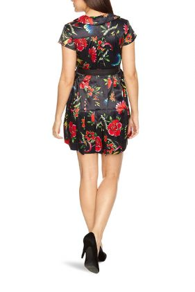 Womens Sailors Delight Peter Pan Dress (Iron Fist)
